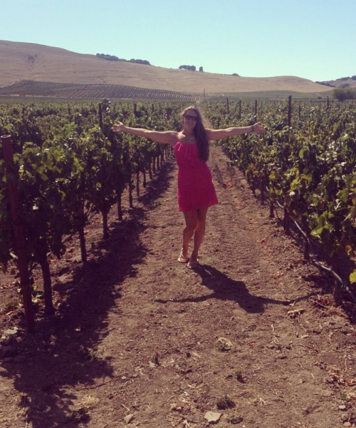 California wine country road trip