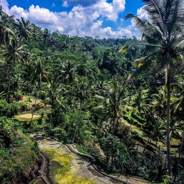 tbt to exploring unreal views in Bali   hellip