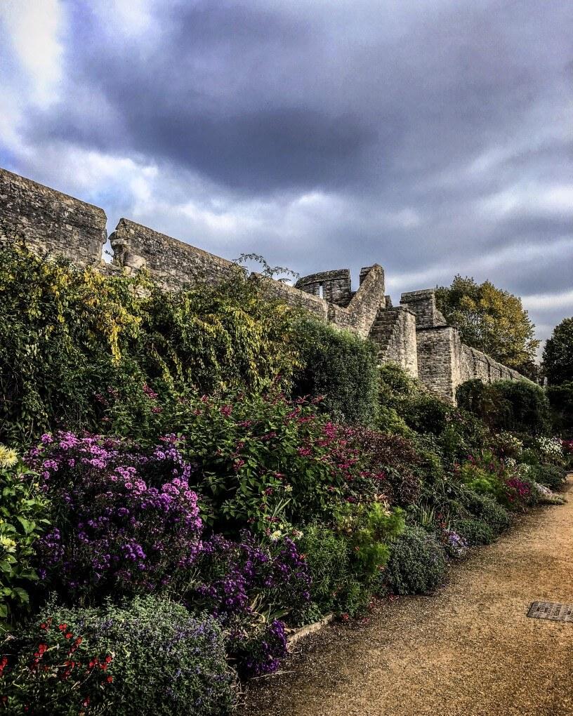 botanitcal gardens oxford