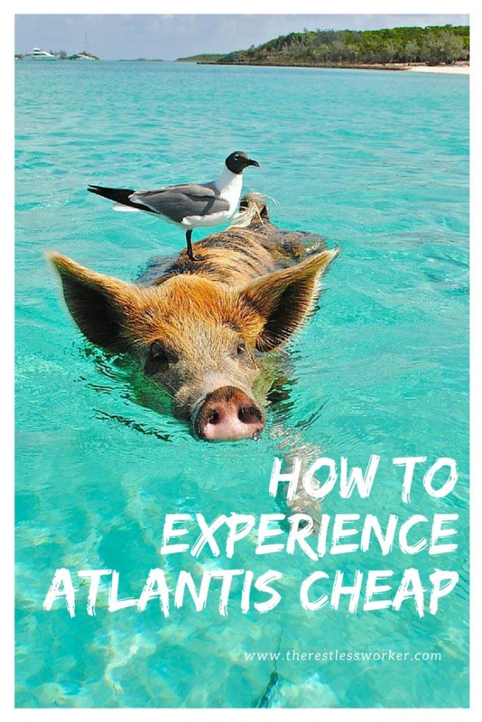how to experience atlantis